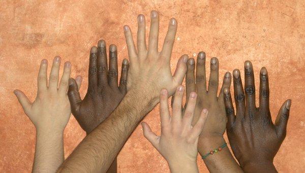 2012-09-26-provincia-asilo-politico-e-rifugiati-02